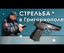 Стрельба в Григориополе