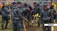Кленовая аллея в память о погибших сотрудниках МВД